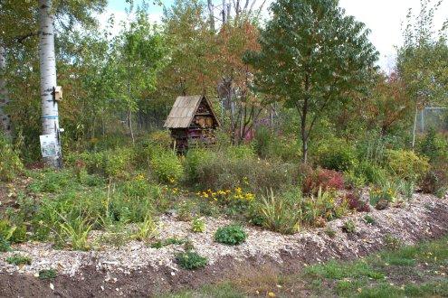 Bed 1-Wildflower Garden-Nipissing Naturalists