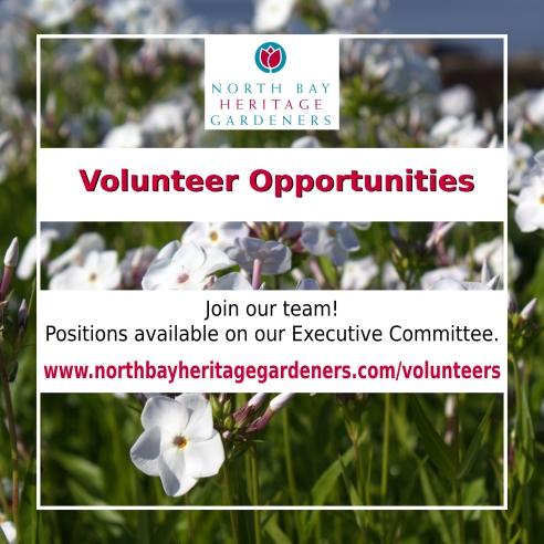 Executive Recruitment (5)